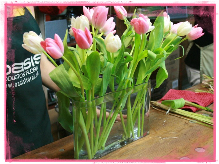 Todos los tulipanes a la misma altura