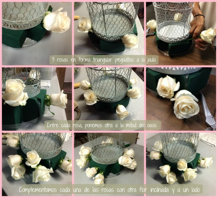 Acomodo de rosas