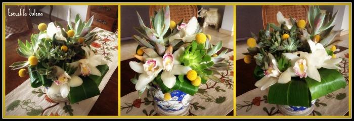 Arreglo floral de suculentas, cymbidiums y craspedia billy balls
