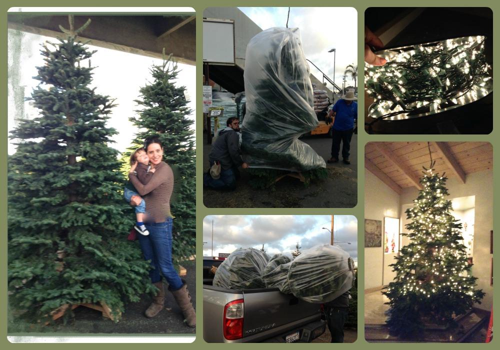 Ideas para decorar el rbol de navidad mi rbol en el - Decorar mi casa en navidad ...