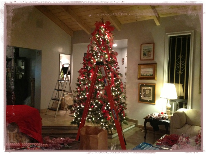 getting the tree ready