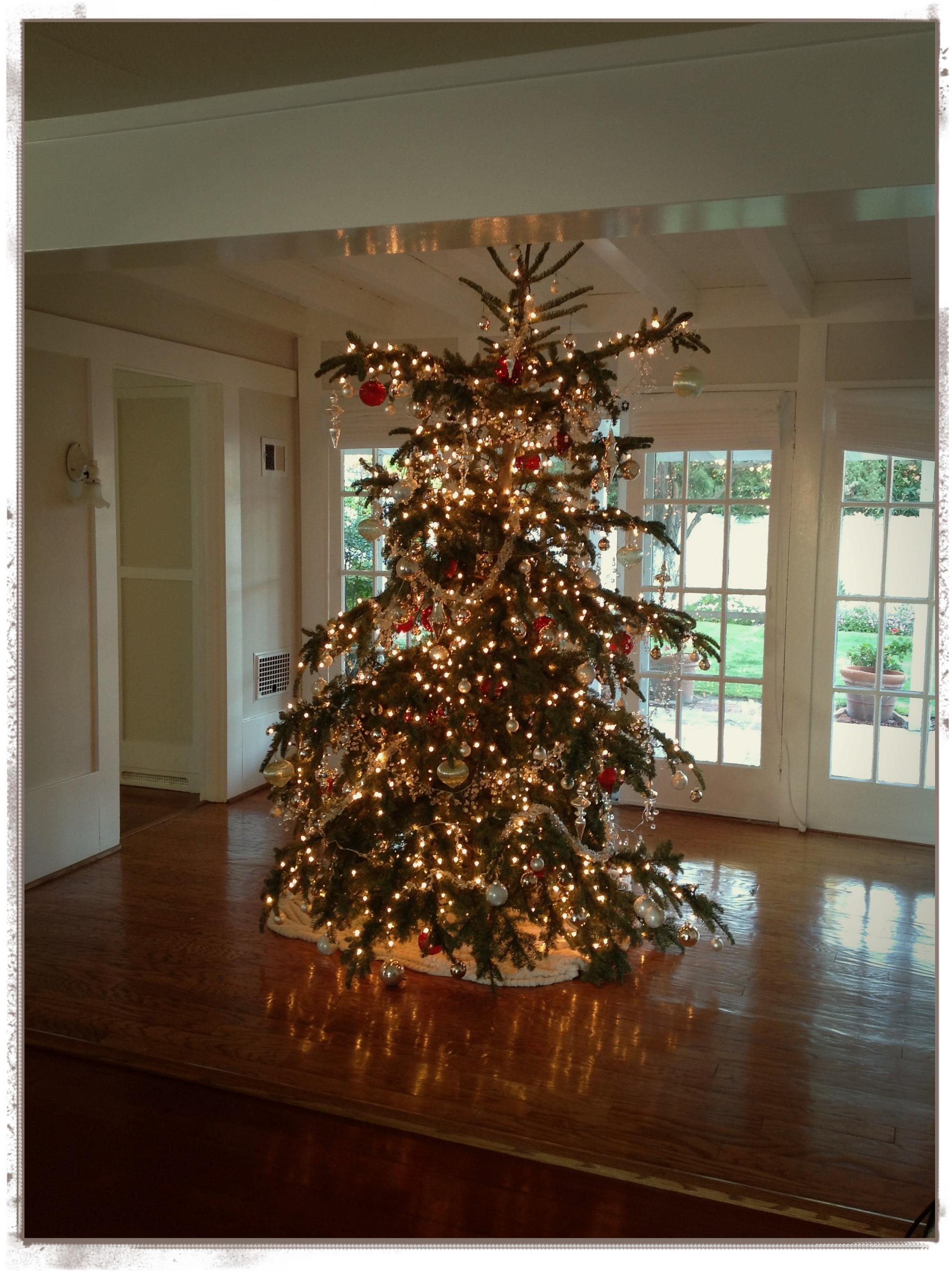 y aunque nos guste lo elegante el colorido clsico del rojo verde y blanco para navidad es la alegra cuando hay nios en casa