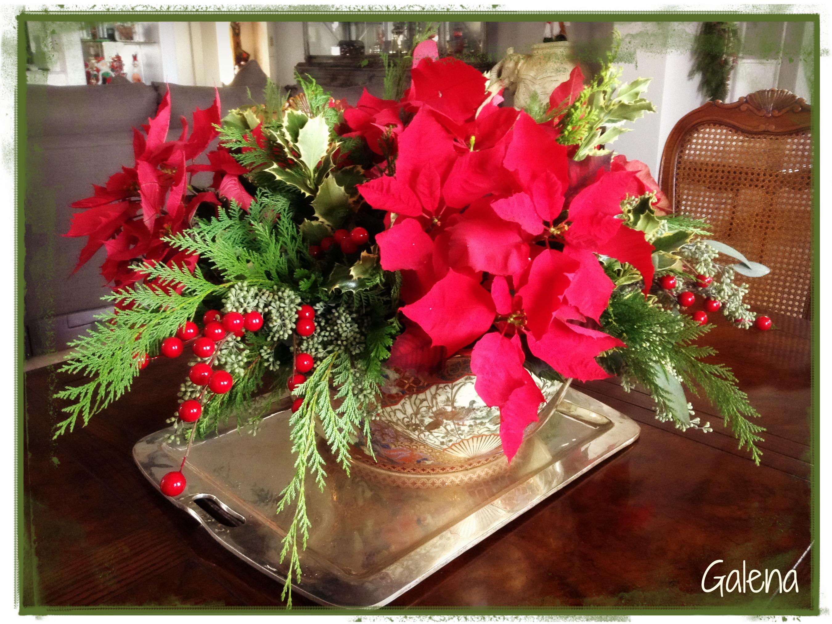 Centro de mesa con nochebuenas ana galena for Adornos con plantas de nochebuena