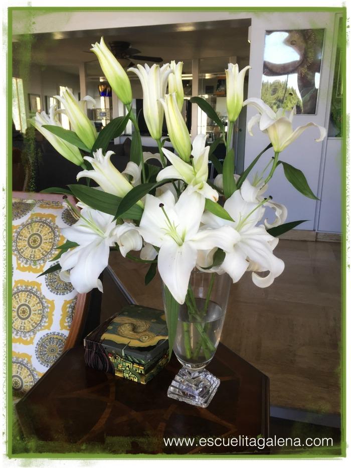 florero casablancas