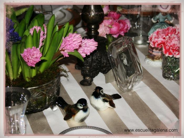 jacintos en la mesa