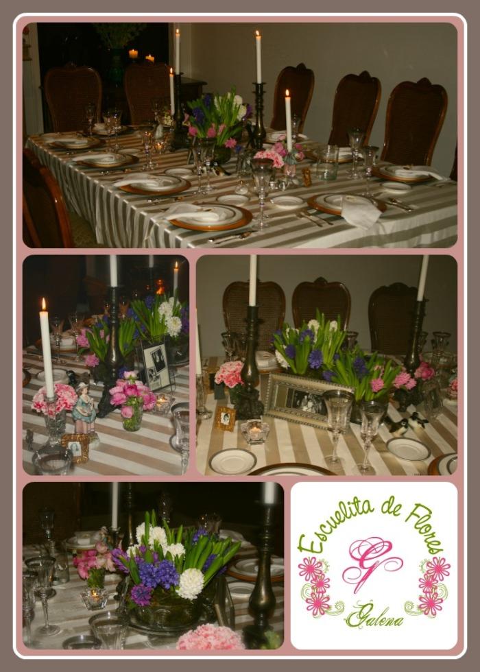 jacintos para la mesa