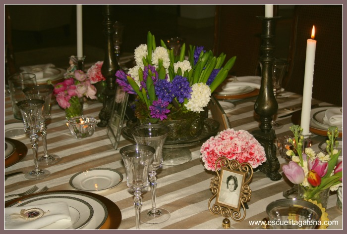 jacintos para una linda mesa