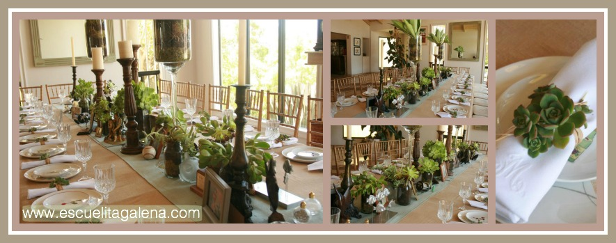Decorando la mesa con suculentas escuelita de flores galena for Decorando mi sala