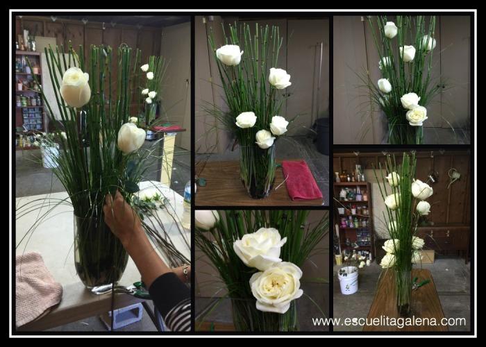 acomodo de las rosas