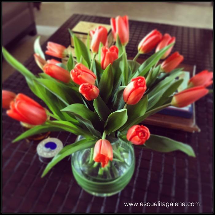 florero con tulipanes