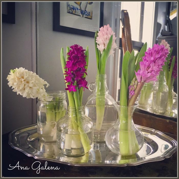 Combinación de frascos cada uno con una flor.