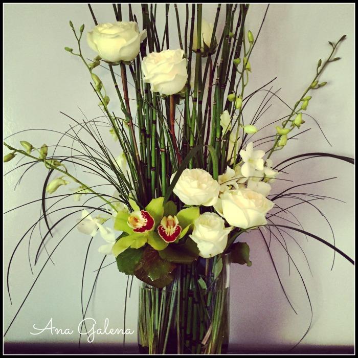 rosas, cymbidiums y dendromios