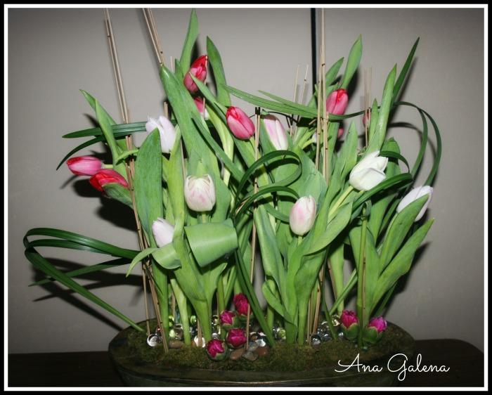 Tulips, arreglo con tulipanes