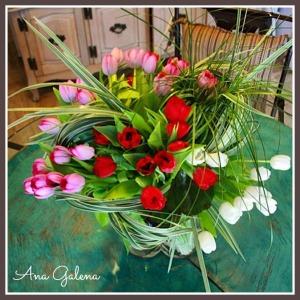 tulips danza de tulipanes
