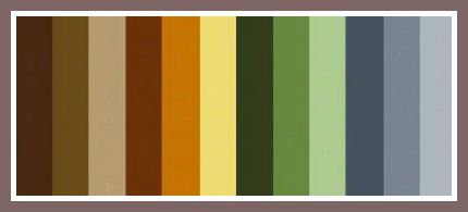 earth color palette