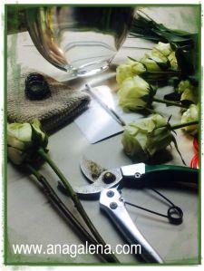 para hacer un cilindro con rosas